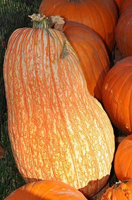 Photograph - Funky Pumpkin by Teresa Blanton