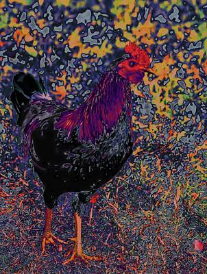 Mixed Media - Funky Rooster No 5 by Lesa Fine