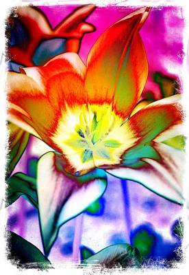 Digital Art - Funky Tulip by Deborah Ann Stott