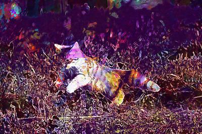 Purebred Digital Art - Funny Baby Cat by PixBreak Art