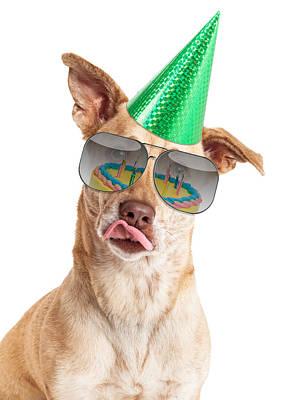 Funny Dog Birthday Cake Reflection Art Print