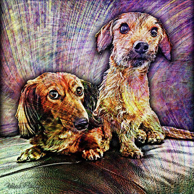 Digital Art - Fur Babies by Barbara Berney