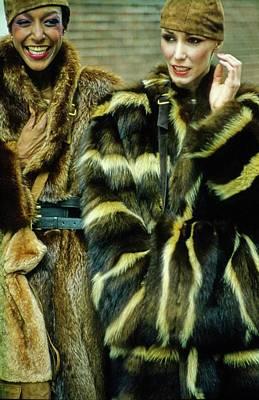 Photograph - Fur Fit Miguel Cruz by Douglas Hopkins
