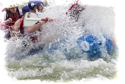 Photograph - Furious Paddling by Dennis Baswell