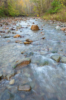 Photograph - Furnace Run Creek by David Watkins