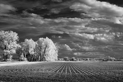 Photograph - Furrows by James Barber