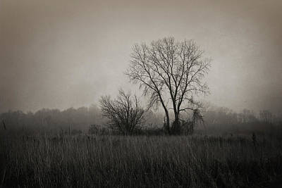 Photograph - Further Down The Road by Shawna Rowe