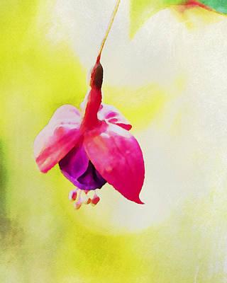 Fuschia Art Print by Bonnie Bruno