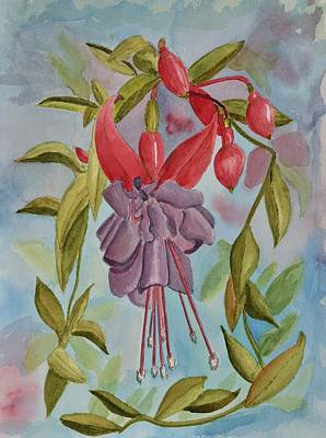 Fuschia Flower Original
