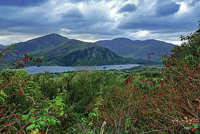 Photograph - Fushia And Mountains by Bill Jordan