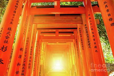 Photograph - Fushimi Inari Torii Gates by Benny Marty