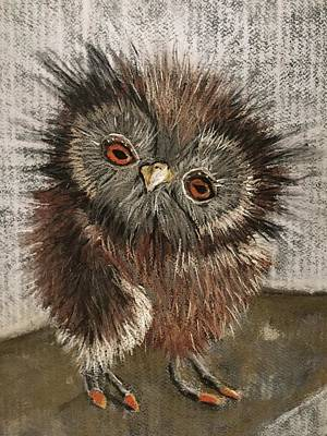Drawing - Fuzzy Owl by Cristel Mol-Dellepoort