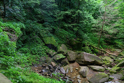 Photograph - Fx10a-2211 Hocking Hills by Ohio Stock Photography