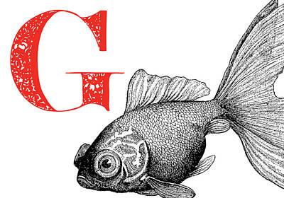 Animal Alphabet Digital Art - G Goldfish by Thomas Paul
