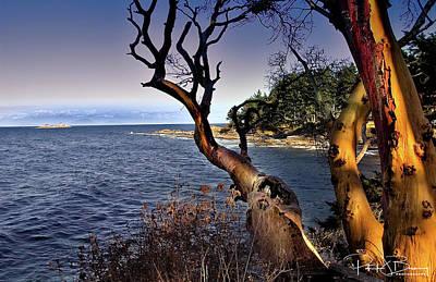Photograph - Gabriola Island by Patrick Boening