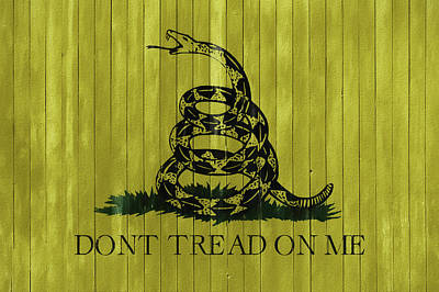 Reptiles Mixed Media - Gadsden Flag Barn Door by Dan Sproul