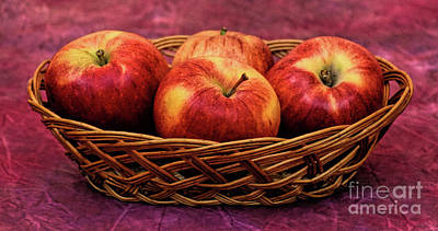 Photograph - Gala Apple Basket 144 by Ray Shrewsberry