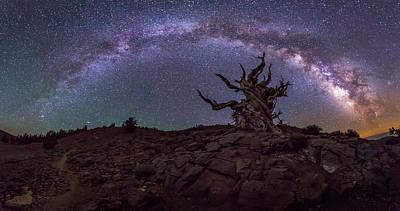 Photograph - Galactic Keeper by Tassanee Angiolillo