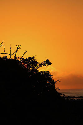 Photograph - Galapagos Sunset Silhouette by John Haldane