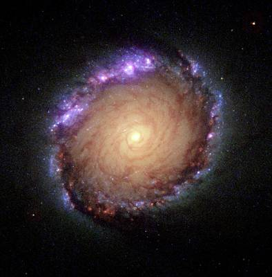 Landmarks Painting Royalty Free Images - Galaxy NGC 1512 Royalty-Free Image by Hubble Space Telescope