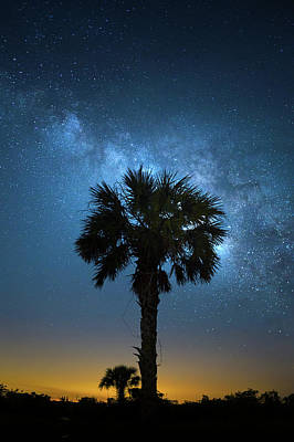 Photograph - Galaxy Oasis by Mark Andrew Thomas