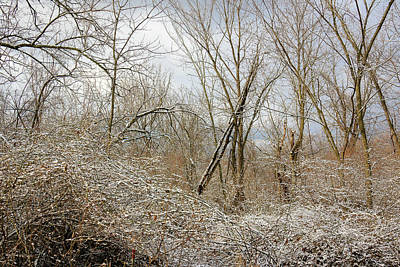 Photograph - Galena Snowy Morning by Joni Eskridge