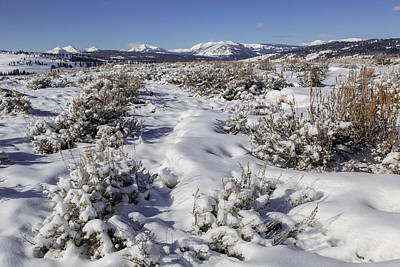 Photograph - Gallatin Range In Winter by Jack Bell