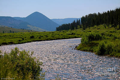 Photograph - Gallatin River by Susan Herber