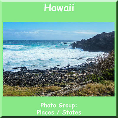 Photograph - Gallery Logo Hawaii by NaturesPix