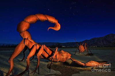 Galleta Meadows Estate Sculptures Borrego Springs Art Print
