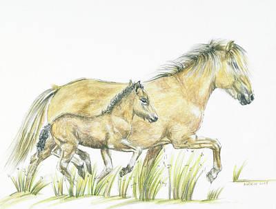 Gallop Original