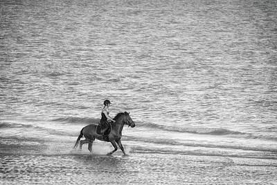 Thoroughbred Farm Photograph - Gallop by Martin Newman