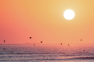 Photograph - Galveston East Beach Sunrise by Victor Culpepper
