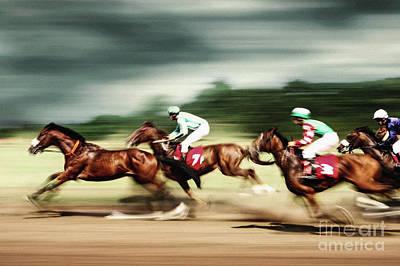 Photograph - Gamble Horses Race Horses Galloping by Dimitar Hristov