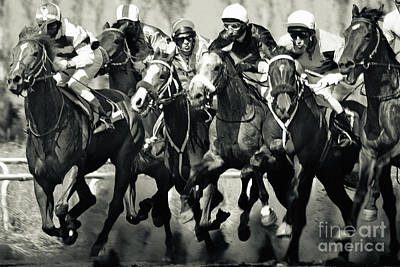 Photograph - Gamble Horses Running by Dimitar Hristov