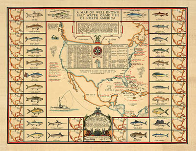 Drawing - Game Fishing Chart Of North America - Game Fish Varieties - Illustrated Map For Anglers by Studio Grafiikka