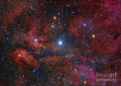 Gamma Cygni Star And Its Surroundings Art Print