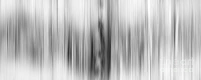Nature Abstract Photograph - Ganging Up by Az Jackson