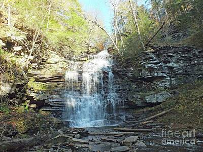 Grateful Dead - Ganoga Falls 3 - Ricketts Glen by Cindy Treger