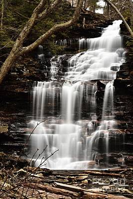 Photograph - Ganoga Falls by Larry Ricker