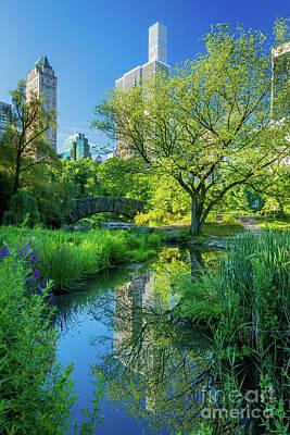 Reflecting Photograph - Gapstow Bridge by Inge Johnsson