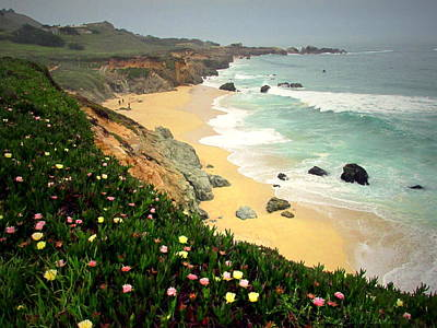 Photograph - Garapata Beach And Iceplant One by Joyce Dickens