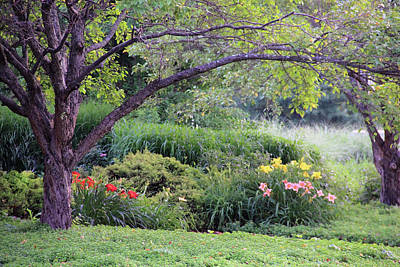Photograph - Garden by Angela Murdock