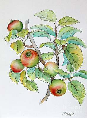 Painting - Garden Apples Sketch by Inese Poga