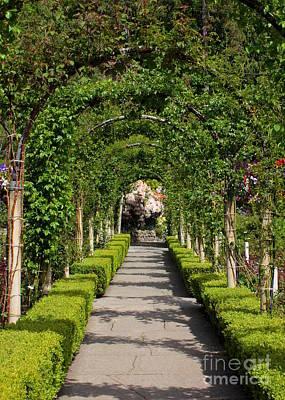 Photograph - Garden Arbor Path by Carol Groenen
