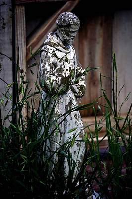 Photograph - Garden Architecture Saint Frances by Lesa Fine