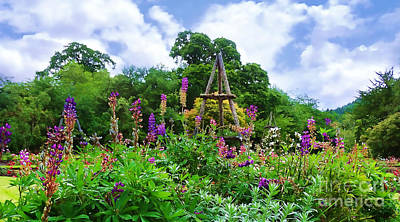 Photograph - Garden At Inverary by Judi Bagwell