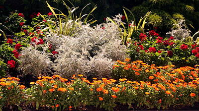 Photograph - Garden At The Parliament Of Victoria by Laurel Talabere