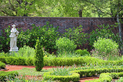 Photograph - Garden At Tryon Palace by Jill Lang