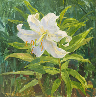 Lilies Royalty-Free and Rights-Managed Images - Garden beauty by Victoria Kharchenko